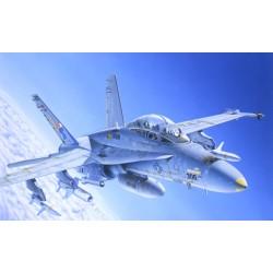 F/A 18 WILD WEASEL C/DF/A 18 WILD WEASEL C/D