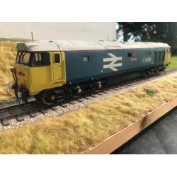 O Gauge RJH Class 50 loco