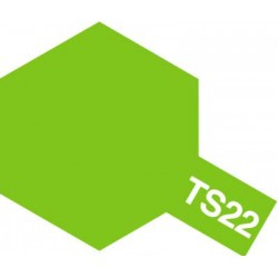 TS-22 Light green